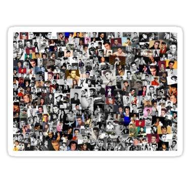 Lancy's Artwork Elvis Presley Collage - 4x4 - State Love Sticker