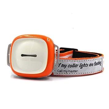OMZBM Pet Collar 2G gsm GPS Localizador Tracker, Gatos Perros Actividad Monitor, Multifunción Buscador De Seguridad Remota, Smart App Tracking System ...