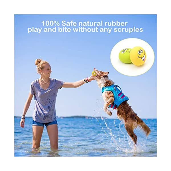 HOLYSTEED-Latex-Dog-Squeaky-Toys-Rubber-Soft-Dog-Toys-Chewing-Squeaky-Toy-Fetch-Play-Balls-Toy-for-Puppy-Small-Medium-Pets-Dog-6pcs