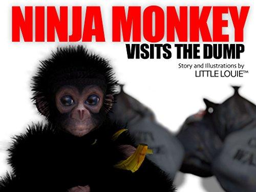 Ninja Monkey Visits the Dump (Ninja Monkey Adventures Book 1)