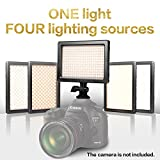 Nanguang LED Video Light 4-in-1 Dimmable Bi-color DSLR LED Light with Sony NP-F Battery, Charger and Carrying Case, LED Light for Canon Nikon DSLR Camera DC Camcorder
