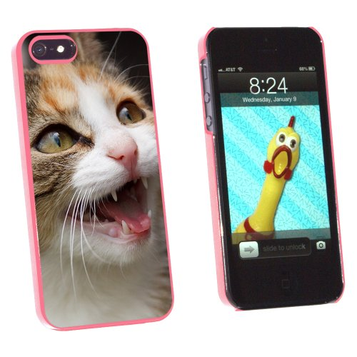 Graphics and More Tabby Kitten Cat Meow - Snap-On Hard Protective Case for Apple iPhone 5/5s - Non-Retail Packaging - Pink