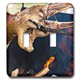 3dRose Alexis Photography - Food Meat - Lamb body roasted on a skewer over an open fire. Drop of hot fat - Light Switch Covers - double toggle switch (lsp_286610_2)