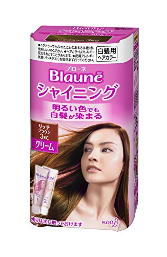 Kao Blaune Shining Hair Color Cream 3 Rich Brown for Gray Hair (Japan Import)