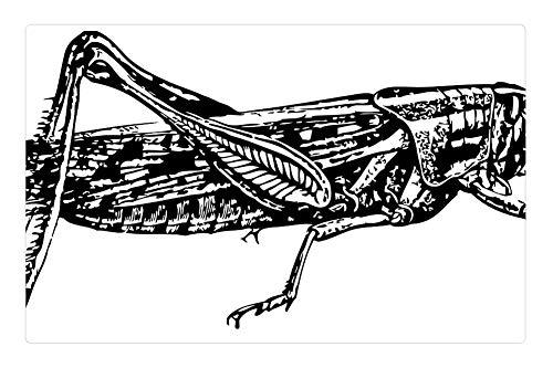 drawing hopper - 6