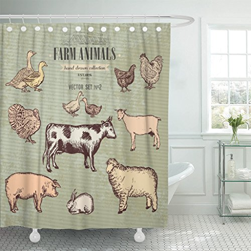 (Emvency Shower Curtain Farm Animals Vintage Collection Cow Pig Goat Sheep Chicken Waterproof Polyester Fabric 60 x 72 inches Set with Hooks)