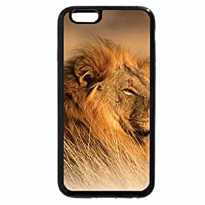 iPhone 6S / iPhone 6 Case (Black) AFRICAN LION