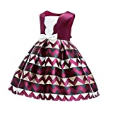 Baby Christmas Dress HEHEM Floral Baby Girl Princess Bridesmaid Pageant Gown Birthday Party Wedding Dress