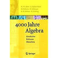 4000 Jahre Algebra: Geschichte. Kulturen. Menschen (Vom Zählstein zum Computer)