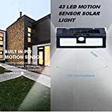 SVE Super Solar Wireless Security Motion Sensor Night Light 43 LEDs Bright and Waterproof for Outdoor/Garden Wall (Black) (Pack of 1)