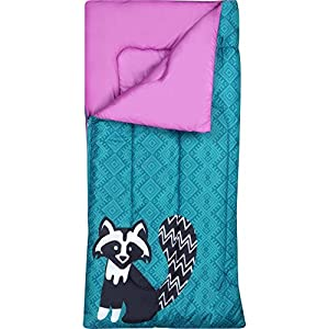 OZARK TRAIL Kids Sleeping Bag Camping Indoor Outoor Traveling (Raccoon/Bear) (Purple,Teal)