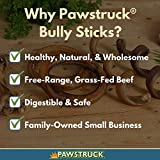 Mini Bully Stick Springs for Dogs