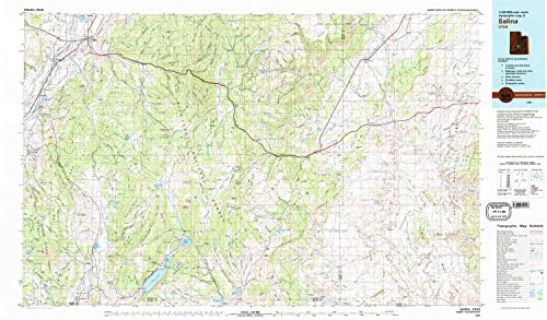 YellowMaps Salina UT topo map, 1:100000 Scale, 30 X 60 Minute, Historical, 1980, Updated 1981, 24.1 x 41.1 in - Tyvek