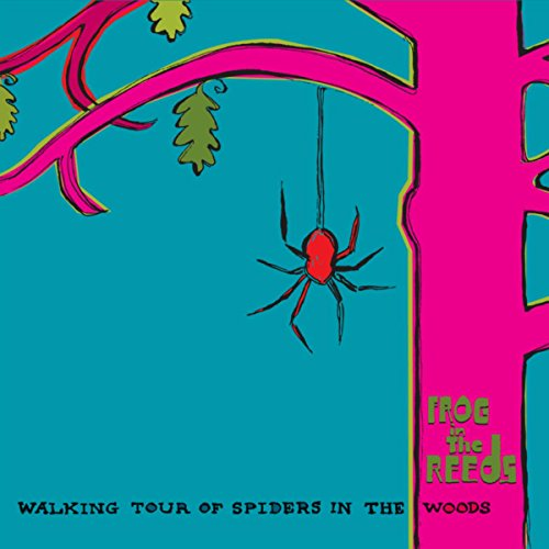 - Walking Tour of Spiders in the Woods