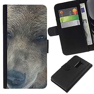 LECELL--Cuero de la tarjeta la carpeta del tirón Smartphone Slots Protección Holder For LG G2 D800 -- Retrato del oso --