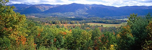 Trees with mountain range in the background Cades Cove Great Smoky Mountains National Park Tennessee USA Poster Print (36 x 12)