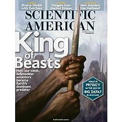 Scientific American, November 2013