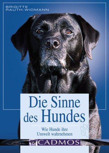 Die Sinne des Hundes: Wie die Hunde ihre Umwelt wahrnehmen