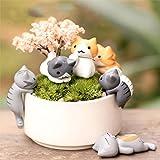 Cheap COOLTOP 6pcs Lucky Miniature Cat Fairy Garden Micro Landscape Home Garden Decoration Plant Pots Bonsai Craft Decor