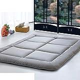 tatami mattress/leisure, thin, folding mattress/autumn and winter thin mattress/ mattress/ mat-B