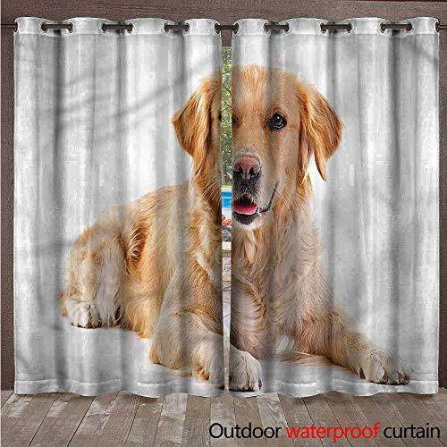 cobeDecor Golden Retriever Outdoor Curtain for Patio Young Puppy W96 x L96(245cm x 245cm) ()
