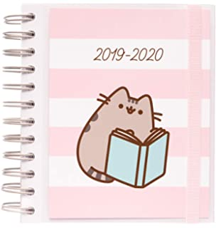 Amazon.com : Pusheen Gold 2019/2020 Week to View Academic ...