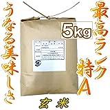 玄米 5kg【最高ランク特A地区】宮城県登米産 ひとめぼれ 一等米