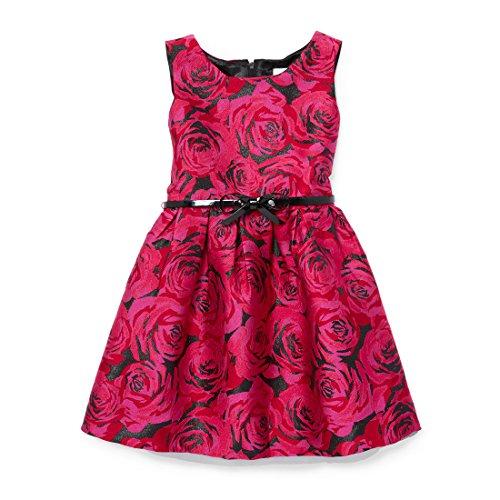 The Children's Place Little Girls' Sleeveless Dressy Dresses, Glamorous 90609, 4 - Childrens Special Occasion Dresses