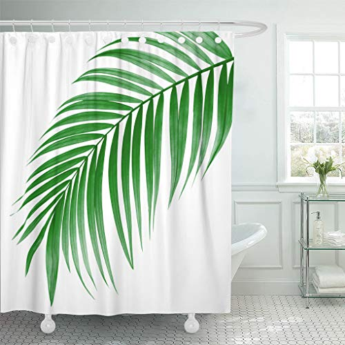 Emvency Shower Curtain Waterproof Decorative 66 x 72 inches Tropical Green Leaf of Palm Tree on White Plant Foliage Frond Arch Bend Betel Botany Set with Hooks Bathroom Curtain