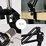 Microphone Stand with Mic Pop Filter and Universal Cell Phone Holder,Adjustable Desktop Mic Suspension Boom Stand for Radio,Webcast,Broadcasting,Studio and Home Recording