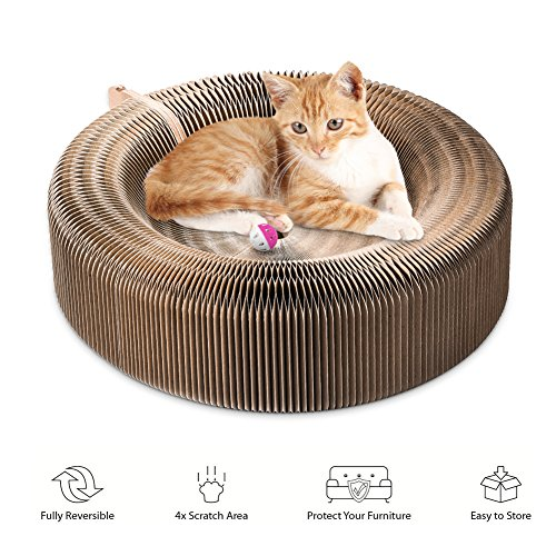 Cat ,Collapsible Cat Scratcher Lounge Post with Ball Toy Bell & Catnip, High Density Recycled Corrugated Kitty Scratching Pad Cats Turbo Toys ()