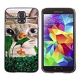 American Shorthair Curl Fish Funny Cat - Aluminum Metal&Hard Plastic Back Case Cover - Black - SAMSUNG Galaxy S5 V / i9600 / SM-G900F / SM-G900M / SM-G900A / SM-G900T / SM-G900W8