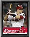 "Paul Goldschmidt Arizona Diamondbacks Sublimated 10.5"" x 13"" Plaque - Fanatics Authentic Certified - MLB Player Plaques and Collages"