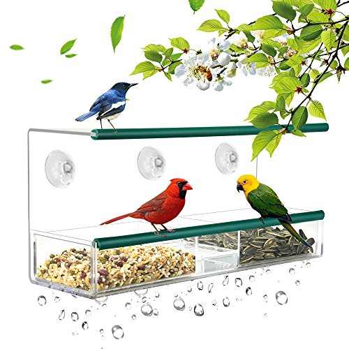 Kamileo Bird Feeder, Window Bird Feeder Squirrel Proof with Dual Rubber Perch, Self-Draining Tray and Suction Cups, In-house Birding Entertainment for Bird Lovers Kids & Pets (2018 New Model) by Kamileo