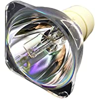 InTeching Projector Bulb Replacement for BenQ 5J.J9R05.001/ MS524A/ MS504/ MX525A/ MS504A/ MS514H/ MS517H/ MS521P/ MS522P/ MS527/ MW526A/ MW529/ MX505/ MX522P/ MX525/ MX528/ MX570