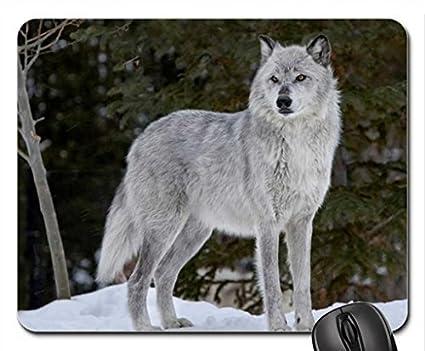 Amazon com: Alpha Female Wolf Mouse Pad, Mousepad: Home