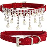 "WwWSuppliers Velvet PU Suede Leather Bling Diamonds Pearls ""ICICLES"" Edition Luxury Fashion Cute Collar for Dogs Puppies Cats Kittens Perro Gato Mascota (SMALL 7 1/2""- 10 1/2"") (Red)"