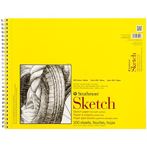"""Strathmore (350-14) 300 Series Sketch Pad, 14""""x17"""" Wire Bound, White 100 Sheets"""