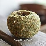 Best Garden Tools Kokedama Moss Balls Bonsai Japanese Moss Ball With Moss Seeds Preserved Moss Balls Personality Small Flower Pot