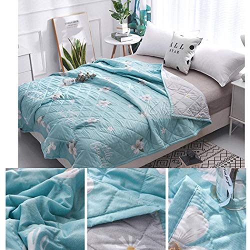 Summer Quilted Blacket Printed Pattern Soft Comfortable Quilt