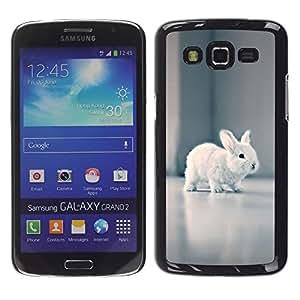 LECELL--Funda protectora / Cubierta / Piel For Samsung Galaxy Grand 2 SM-G7102 SM-G7105 -- Tiny Baby Rabbit White Hare Bunny Grey --
