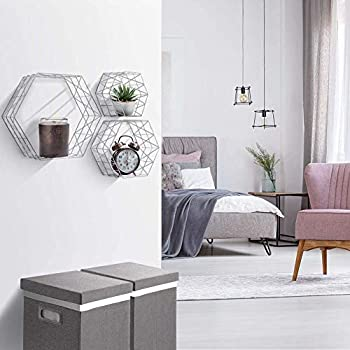 Wall Mounted Hexagon Floating Shelves - Metal Wire Hanging Shelf for Living Room Bedroom Décor Photos, Collectibles, Plants(Set of 3, White)