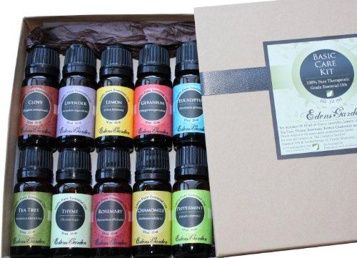 Basic Care Essential Oil Aromatherapy Kit/ Set- 10/ 10 ml (Clove, Lavender, Lemon, Geranium, Eucalyptus, Tea Tree, Thyme, Rosemary, Roman Chamomile and Peppermint), Health Care Stuffs