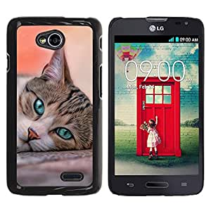 PC/Aluminum Funda Carcasa protectora para LG Optimus L70 / LS620 / D325 / MS323 Cat House American Shorthair British / JUSTGO PHONE PROTECTOR