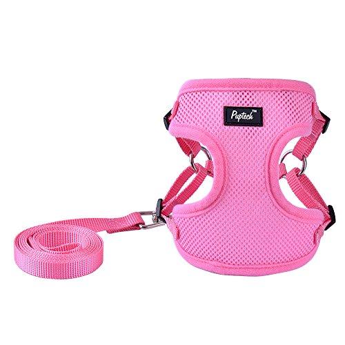 PUPTECK Harness for Small Dogs - Leash Set Adjustable Soft Mesh Pet Vest for Walking -