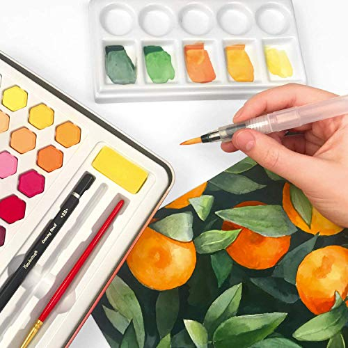 Pagos Watercolor Paint Set - Art Kit of 36 Vivid Colors w 10 Sheets Water Color Paper - Refillable Brush Sponge Drawing Pencil, Brush, Gift Set for Adults Kids Beginners Artists Students