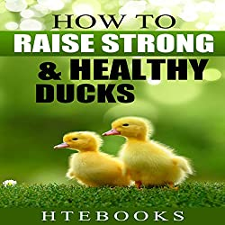 How to Raise Strong & Healthy Ducks: Quick Start Guide
