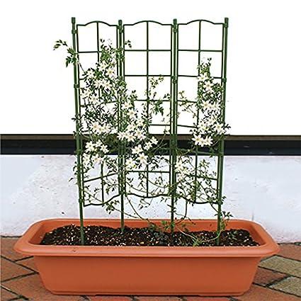 Amazon.com: ecotrellis desmontable enrejado planta apoyo ...