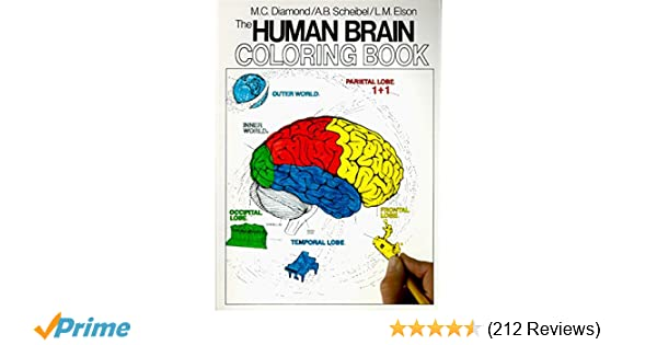The Human Brain Coloring Book (Coloring Concepts