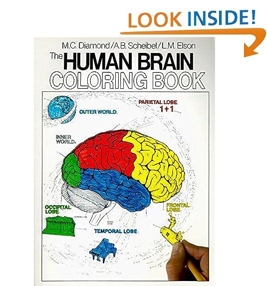 Science Coloring Books: Amazon.com
